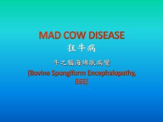 MAD COW DISEASE 狂牛病