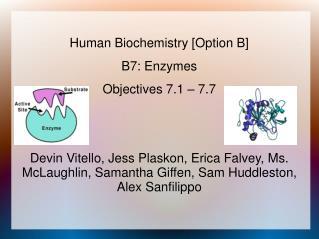Human Biochemistry [Option B] B7: Enzymes Objectives 7.1 – 7.7