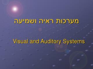 מערכות ראיה ושמיעה
