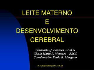LEITE MATERNO  E  DESENVOLVIMENTO  CEREBRAL