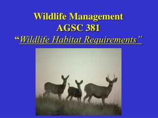 "Wildlife Management AGSC 381 "" Wildlife Habitat Requirements"""