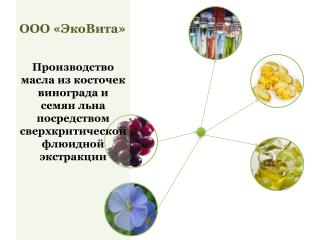 ООО «ЭкоВита»