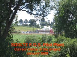 SOULTZ E.G.S. Pilot Plant Current status of the project January 2006