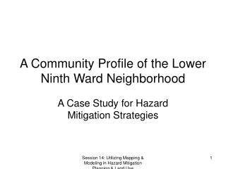 A Community Profile of the Lower Ninth Ward Neighborhood