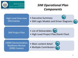 SIM Operational Plan Components
