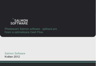Představení Salmon software - aplikace pro řízení a optimalizace Cash Flow.