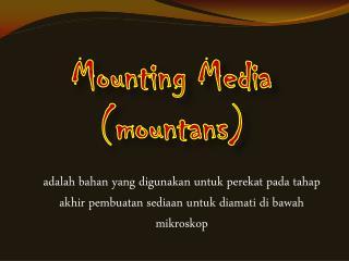 Mounting Media ( mountans )