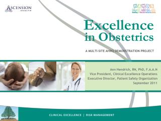 Excellence in  Obstetrics A Multi-Site AHRQ Demonstration Project
