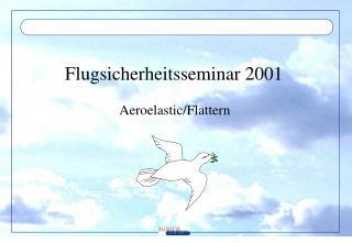 Flugsicherheitsseminar 2001