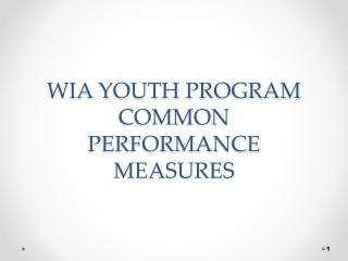 WIA YOUTH PROGRAM COMMON PERFORMANCE MEASURES