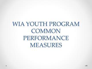 WIA YOUTH PROGRAM COMMON PERFORMANCE MEASURES