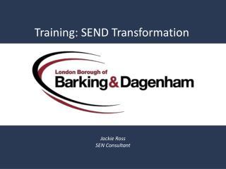 Training: SEND Transformation