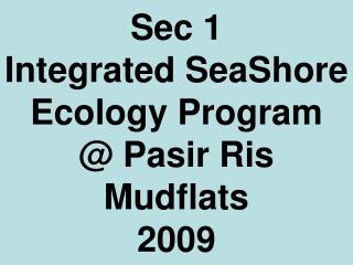 Seashore Ecology