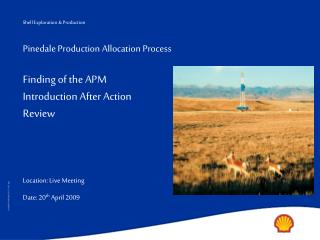 Pinedale Production Allocation Process