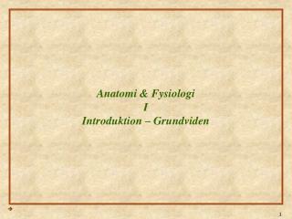 Anatomi & Fysiologi I Introduktion – Grundviden