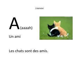 L'alphabet A ( aaaah ) Un  ami Les chats  sont  des  amis .