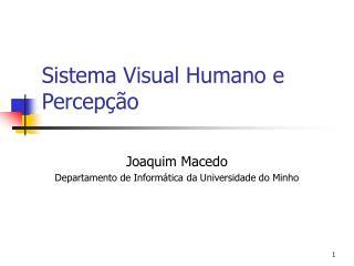 Sistema Visual Humano e Percep  o