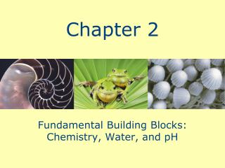 Fundamental Building Blocks: Chemistry, Water, and pH
