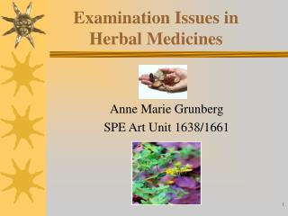 Examination Issues in Herbal Medicines
