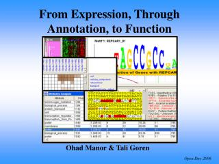 From Expression, Through Annotation, to Function