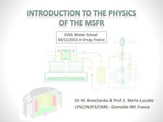 Dr. M.  Brovchenko  & Prof. E. Merle- Lucotte LPSC/IN2P3/CNRS - Grenoble  INP, France