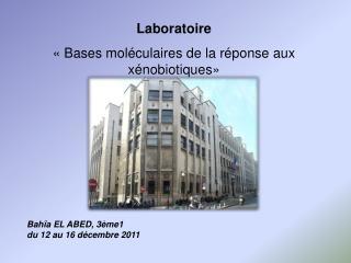 Laboratoire « Bases moléculaires de la réponse aux xénobiotiques»