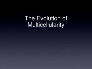 The Evolution of Multicellularity