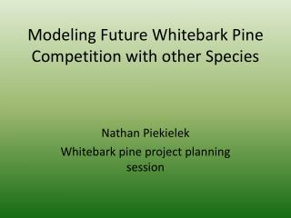 Modeling Future Whitebark Pine Competition with other Species