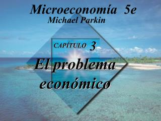 CAPÍTULO  3 El problema económico