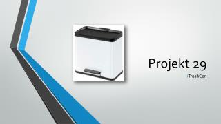 Projekt 29