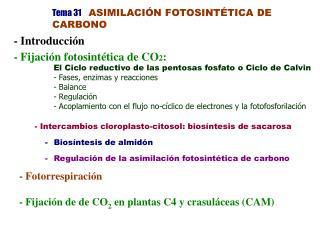 Tema 31 ASIMILACI�N FOTOSINT�TICA DE CARBONO