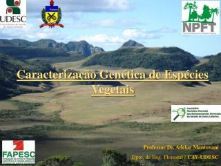 Caracterização Genética de Espécies Vegetais