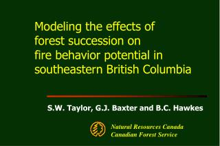 Modeling the effects of  forest succession on  fire behavior potential in