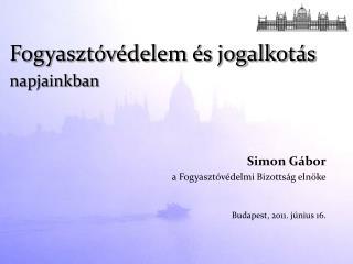 Simon Gábor a Fogyasztóvédelmi Bizottság elnöke Budapest, 2011. június 16.