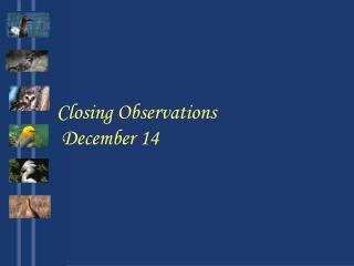 Closing Observations  December 14