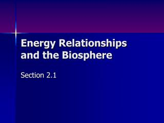 Energy Relationships and the Biosphere