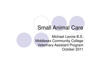 Small Animal Care