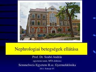 Nephrologiai betegségek ellátása