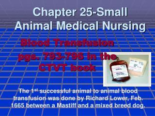 Chapter 25-Small Animal Medical Nursing