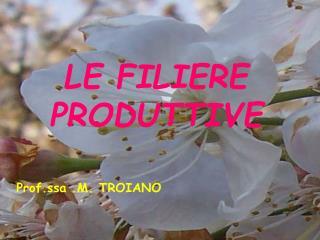 LE FILIERE PRODUTTIVE