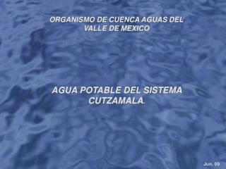 ORGANISMO DE CUENCA AGUAS DEL VALLE DE MEXICO