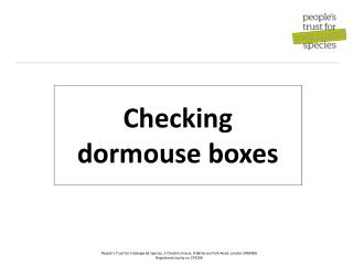 Checking dormouse boxes