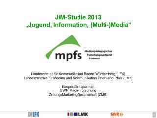 """JIM-Studie 2013 """"Jugend, Information, (Multi-)Media"""""""