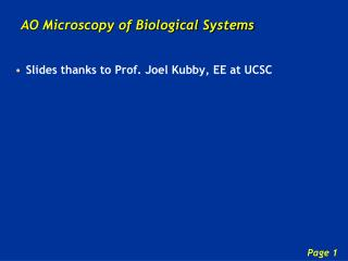 AO Microscopy of Biological Systems