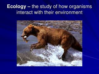Ecology – the study of how organisms interact with their environment