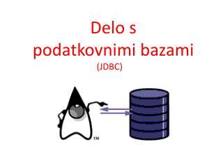 Delo s  podatkovnimi bazami