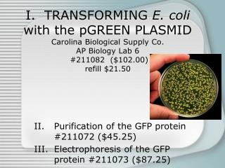 Purification of the GFP protein #211072 ($45.25)
