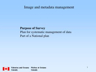 Image and metadata management