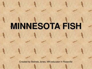 MINNESOTA FISH