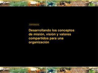 Desarrollando los conceptos de misi�n, visi�n y valores compartidos para una organizaci�n